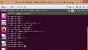ubuntu passwrd principal